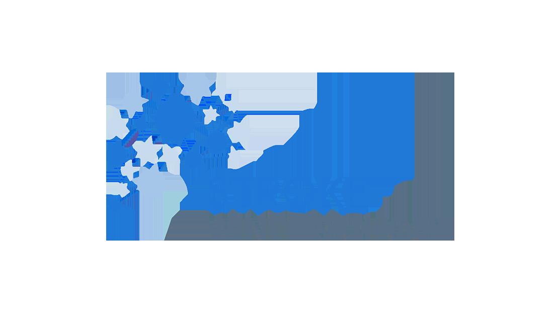 Stroke Winterschoool